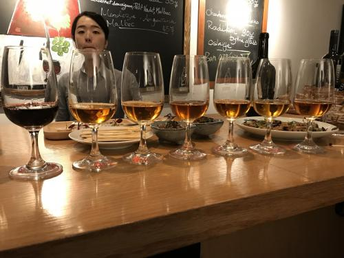 Gravner orange wine tasting | Vito Donatiello wine blog