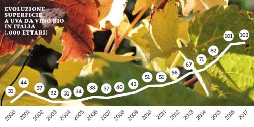 Organic wine trend slowing down | Italian Wine & Food in China blog