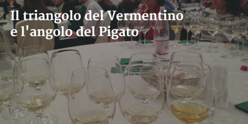 6 Vermentino and 3 Pigato wine tasting by Italian Wine & Food In China