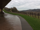 outdoor_from_winery_left.png