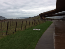 outdoor_from_winery_right.png